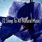 72 Sleep to All Natural Music by Baby Sleep Sleep