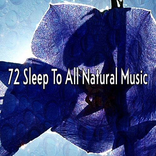 72 Sleep to All Natural Music by Baby Sleep Sleep