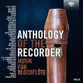 Anthology of the Recorder, Vol. 6 by Various Artists