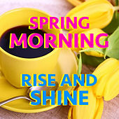 Spring Morning Rise And Shine von Various Artists