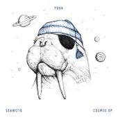 Cosmos - Single de Yoba