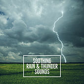 Soothing Rain And Thunder Sounds by Nature Sounds (1)