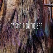 57 Spirit in the Spa de White Noise Babies