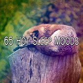 65 Hot Sleep Moods by Spa Relaxation