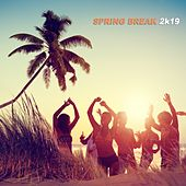 Spring Break 2k19 by Various Artists