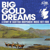 Big Gold Dreams: a Story of Scottish Independent Music 1977-1989 by Various Artists