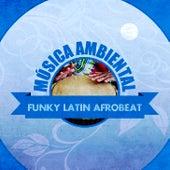 Música Ambiental Funky Latin Afrobeat (Instrumental) von Albelo