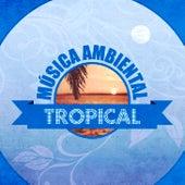 Música Ambiental Tropical (Instrumental) de Various Artists