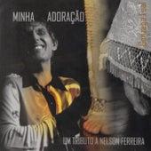 Minha Adoração: Um Tributo a Nelson Ferreira by Gonzaga Leal