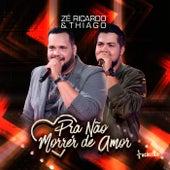 Pra Não Morrer de Amor (Acústico) (Ao Vivo) de Zé Ricardo & Thiago