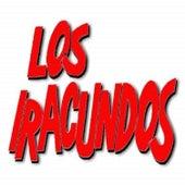 Puerto Montt / Te Lo Pido de Rodillas / Va Cayendo una Lagrima de Los Iracundos