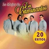 Lo Mejor 20 Exitos by Los Caminantes