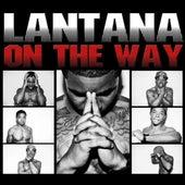 Lantana on the Way by Lantana