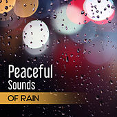 Peaceful Sounds of Rain: New Age Music to Help You Relax, Deep Sleep, Meditation, Echoes of Nature for Contemplations & Reflections, Yoga Training by Water Music Oasis