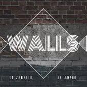 Walls (Remix) by Lozanello
