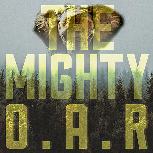 All Because of You by O.A.R.