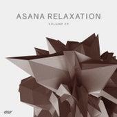 Asana Relaxation, Vol.9 de Various Artists