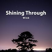 Shining Through (Extended Mix) by Wink