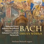 Bach Family: Organ Works by Stefano Molardi