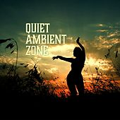 Quiet Ambient Zone by Various Artists