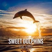 Sweet Dolphins for Sleep: Ocean Sounds Experience, Lullabies of Nature by Deep Sleep Music Academy