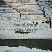 The Wasp (For Trent) by David Stone