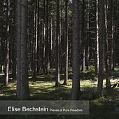Pieces of Pure Freedom von Elise Bechstein