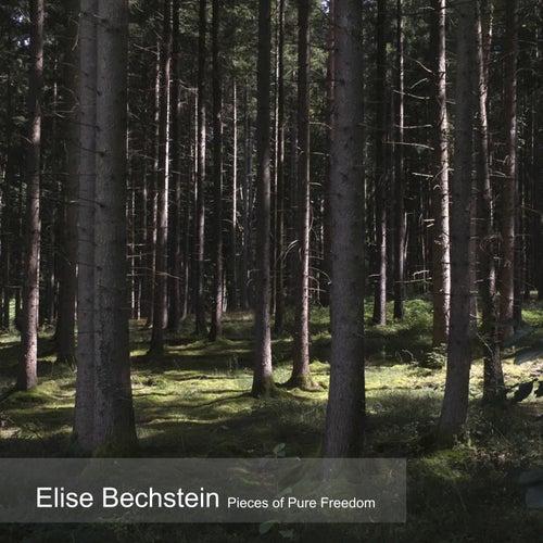 Pieces of Pure Freedom von Elise Bechstein
