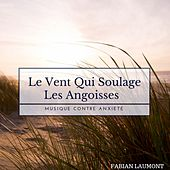 Le Vent Qui Soulage Les Angoisses (Musique Contre Anxiété) von Fabian Laumont