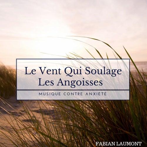Le Vent Qui Soulage Les Angoisses (Musique Contre Anxiété) de Fabian Laumont