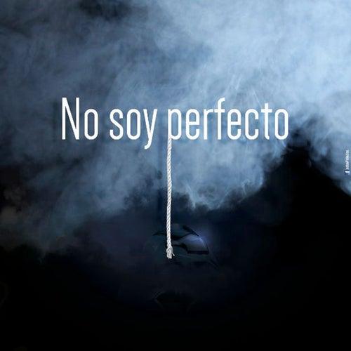 No Soy Perfecto by Sabroso