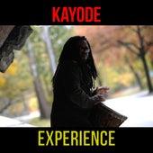 Experience von Kayode