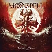 Scorpion Flower von Moonspell