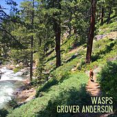Wasps by Grover Anderson