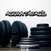 Agora Tá Fácil by Guru