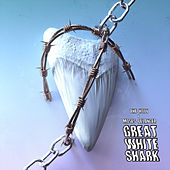 Great White Shark by Holy