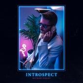 Introspect by Michael Oakley
