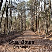 Stay Down (Freestyle) de Harry James