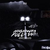 Highway Full of Pain von Zoey Dollaz