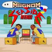 Seaside Nitendo by Magnom