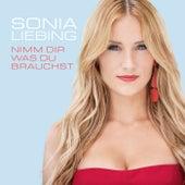 Nimm dir was du brauchst von Sonia Liebing