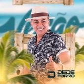 Leviana (Cover) de Dedé do Forró
