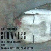 Slowness by Rouzbeh Rafie