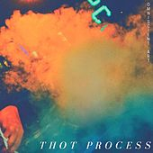 Thot Process by Omniscient Art