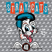 Cat Fight (Over A Dog Like Me) von Stray Cats