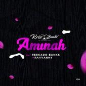 Aminah de Krizbeatz
