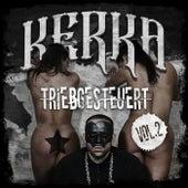 Triebgesteuert EP Vol.2 by Kerka
