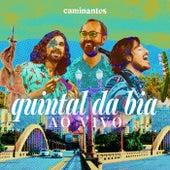 Quintal da Bia (Ao Vivo) by Los Caminantes