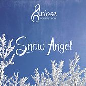 Snow Angel de Various Artists