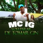 Vou Parar de Tomar Gin by Mc IG